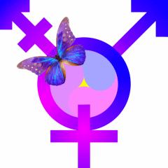 Another_Yin-Yang-Yuan_BiggerWholeButterfly_TransGender-Symbol