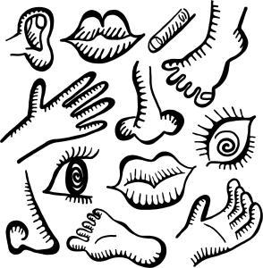anatomy-doodle-icons